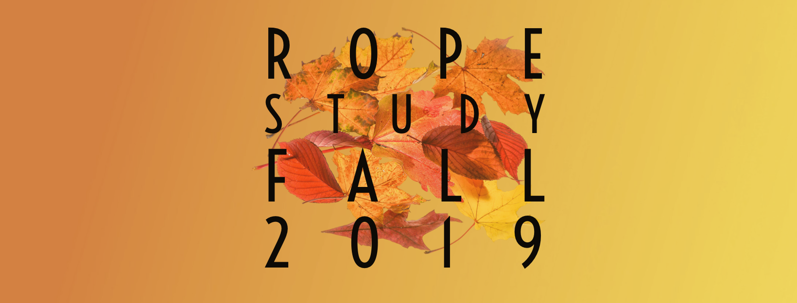 Applications Open for Rope Study Classes!